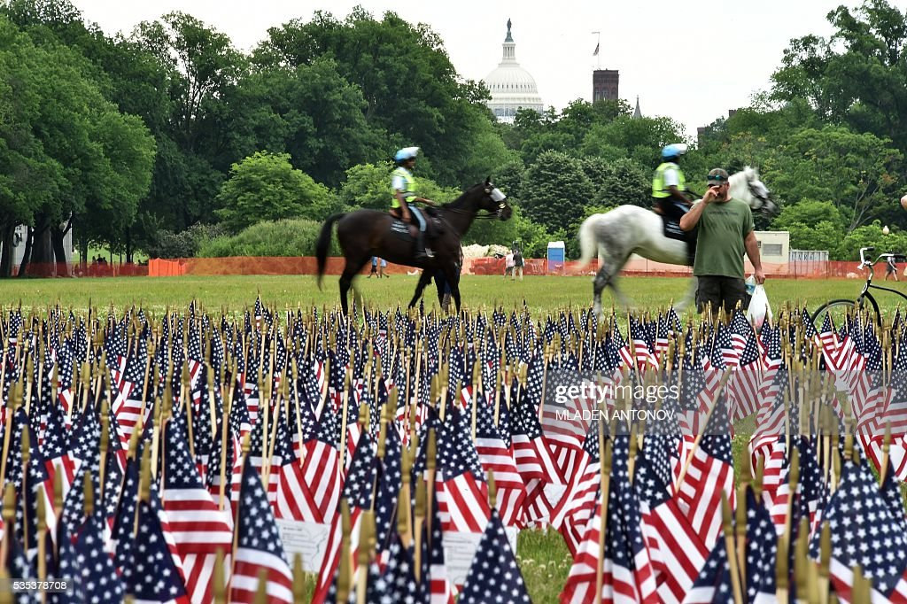 Thousands of US flags are placed in memory of the fallen soldiers near the Reflecting Pool on Memorial Day in Washington, DC,May 29, 2016. / AFP / MLADEN