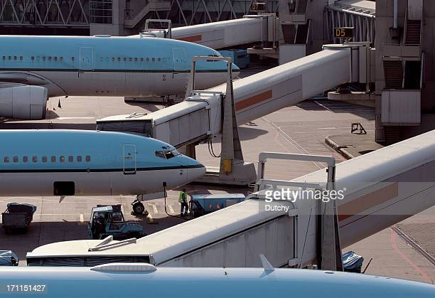 Three airplanes neatly parked at gate of modern airport