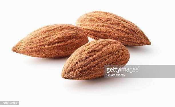 Three almonds on white background