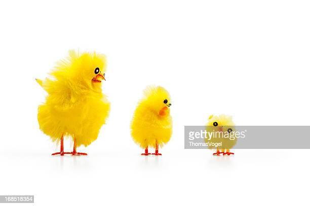 Drei Baby-Huhn