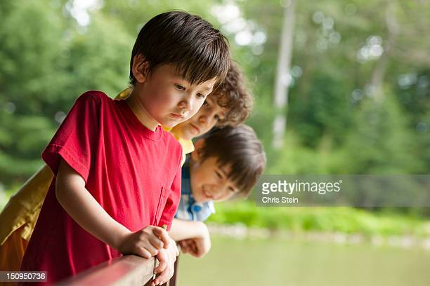 Three Boys and a Fish Pond