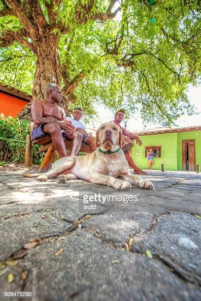 Three Brazilian men and dog sitting under shady tree