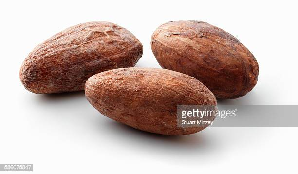 Three cacoa beans on white background
