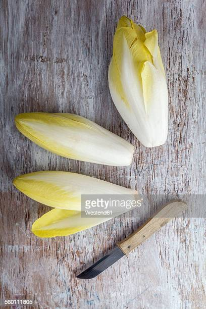 Three chicories and kitchen knife