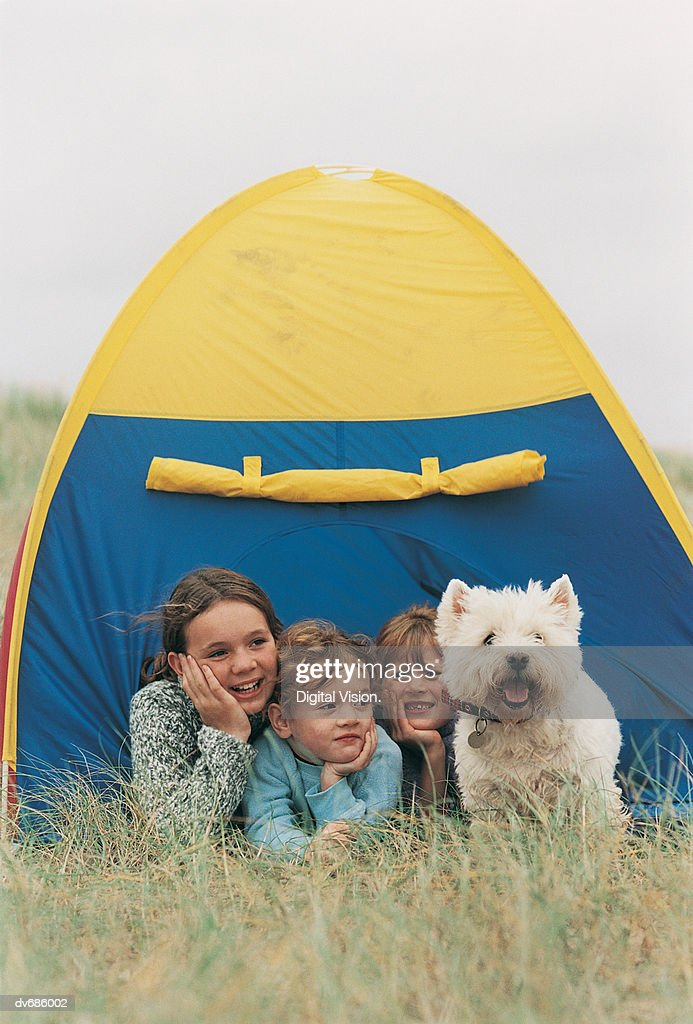 Three Children and a West Highland Terrier Looking Out From a Tent : Stock Photo