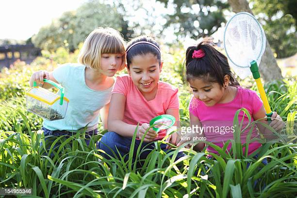 Three children catching butterflies on a bright day
