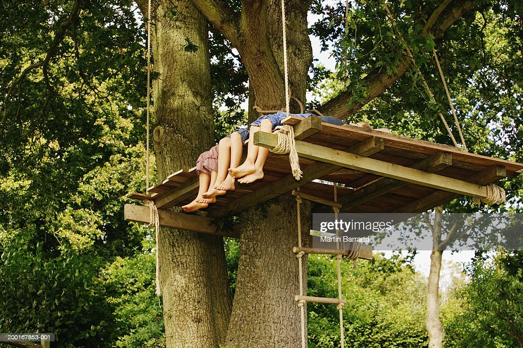 Three children (9-12) in treehouse, low section, low angle view : Stock Photo