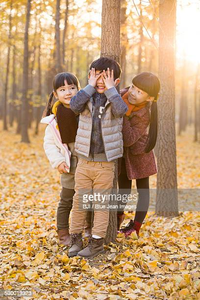 Three children playing hide and seek in autumn woods
