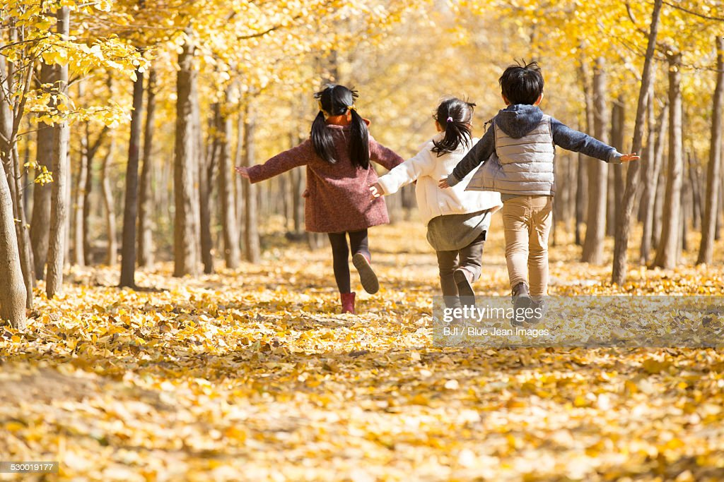 Three children playing in autumn woods : Photo
