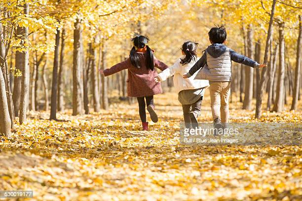 Three children playing in autumn woods