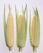 Three corn cobs on white background, close-up