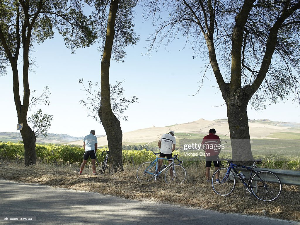 Three cyclists urinating at roadside, rear view : Stock Photo