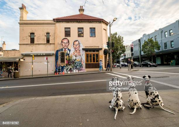 Three dalmation dogs look at a mural by artist Scott Marsh depicting former Prime Minister Tony Abbott is seen in Redfern on September 11 2017 in...