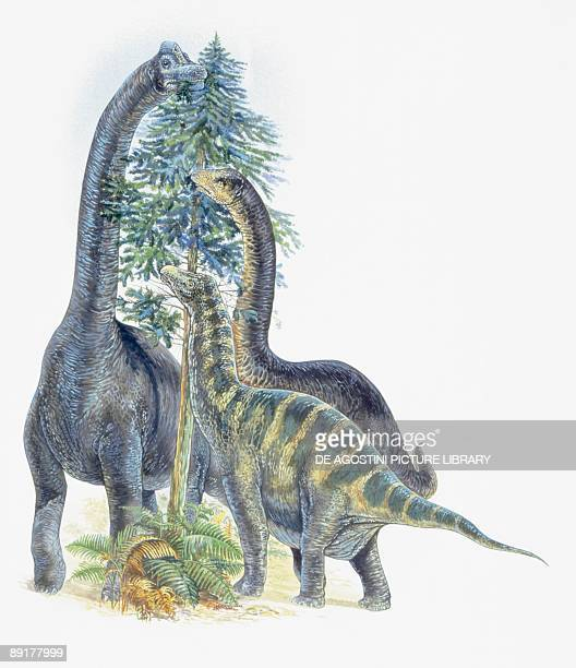 Three dinosaurs eating leaves of a tree