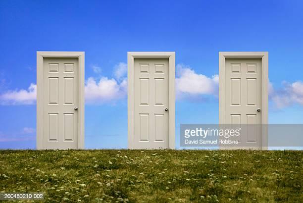 Three doors in field, (digital composite)
