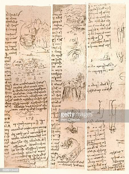 Three drawings c1472c1519 The lefthand sketch refers to the theory of the proportions of the human figure while the other two refer to the...