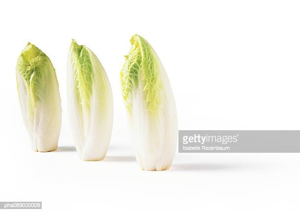 Three endives, standing on end, full length