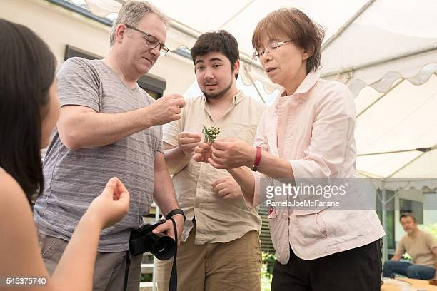 Three Generation Interracial Family Learning about Edible Japanese Pepper Plant