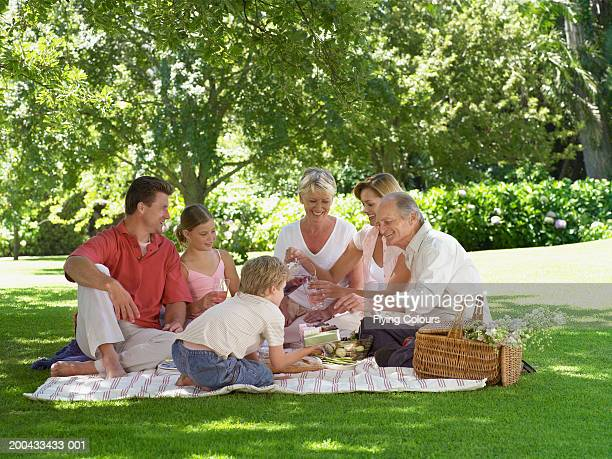 Three generational family having picnic on rug under tree, smiling