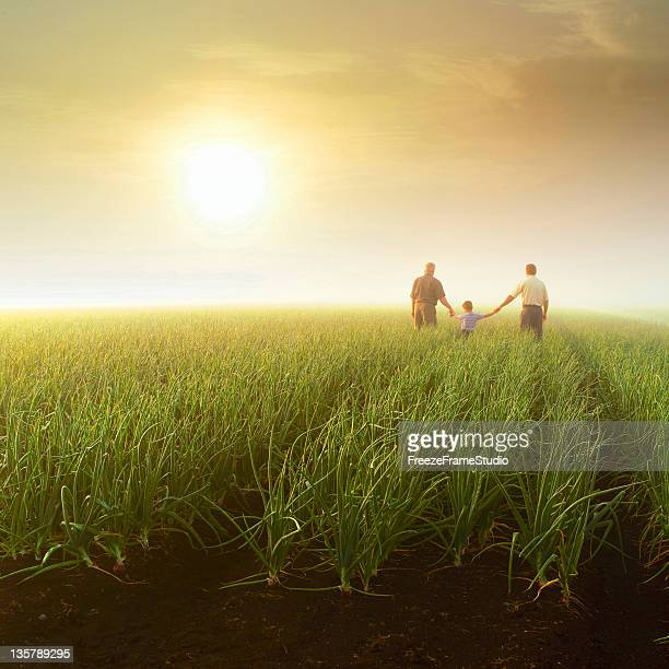 Three generations (grandfather, son, grandson) holding hands in farm field