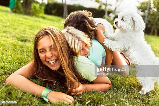 Three girls having fun with a puppy on a meadow