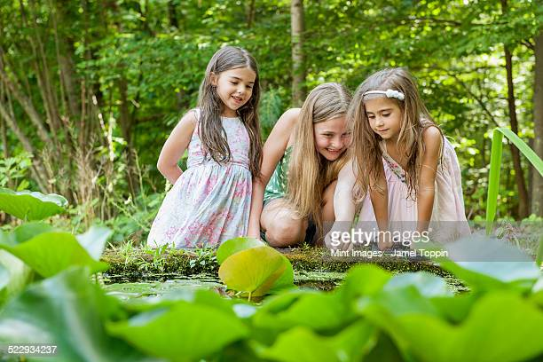 Three girls playing outdoors.