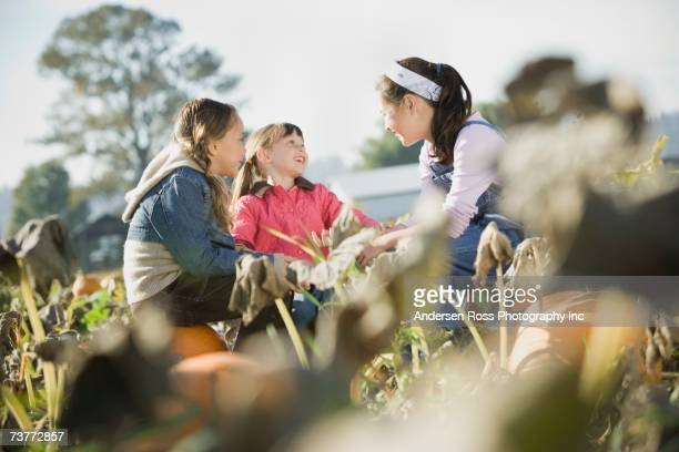 Three girls sitting in pumpkin patch talking