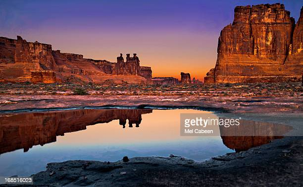 Three Gossips And Reflection