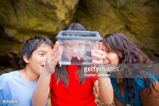 three kids looking at sea cucumber : Stock Photo
