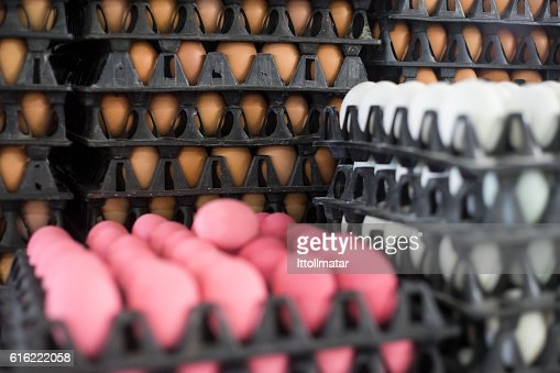 Three kind of eggs in a black package : Stock Photo