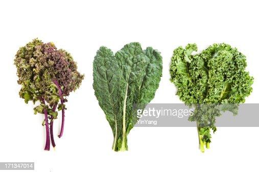Three leafy kale plants