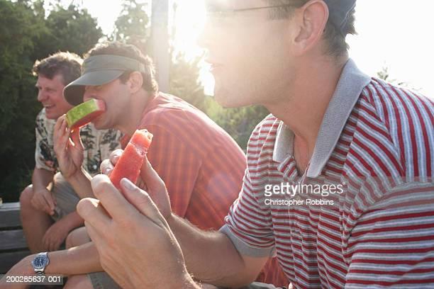Three men eating watermelon in garden (sun flare)