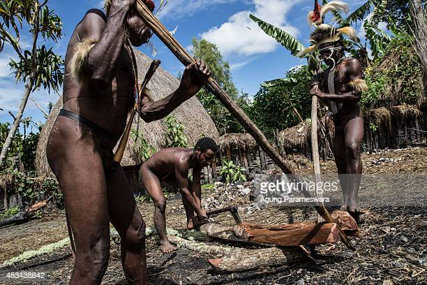 Three Men from the Dani cut wood as they prepare to burn stones at Obia Village on August 9 2014 in Wamena Papua Indonesia The Dani tribe live a...