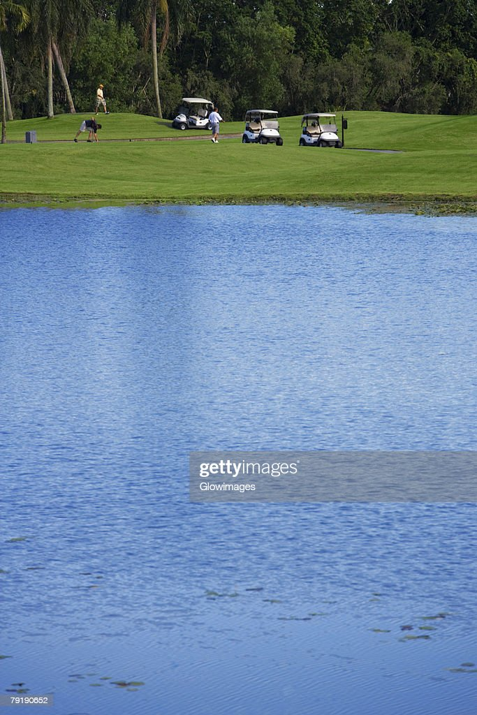 Three men playing golf in a golf course : Stock Photo