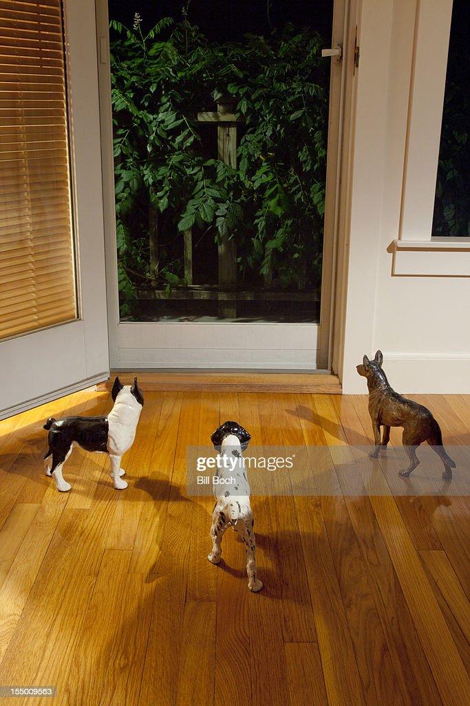Three model watchdogs sense something : Stock Photo
