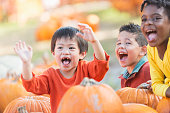 A group of three multi-ethnic children, boys 4-5 years old, sitting on the ground with lots of pumpkins at a market stand, laughing and shouting. The Asian boy has his arms raised.