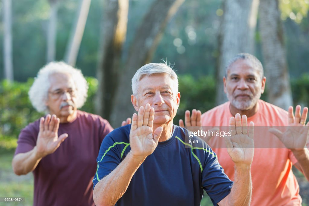 太極拳の練習を公園で 3 つの多民族年配の男性 : ストックフォト