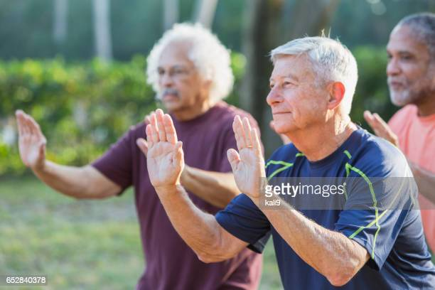 Three multi-ethnic senior men in park practicing tai chi