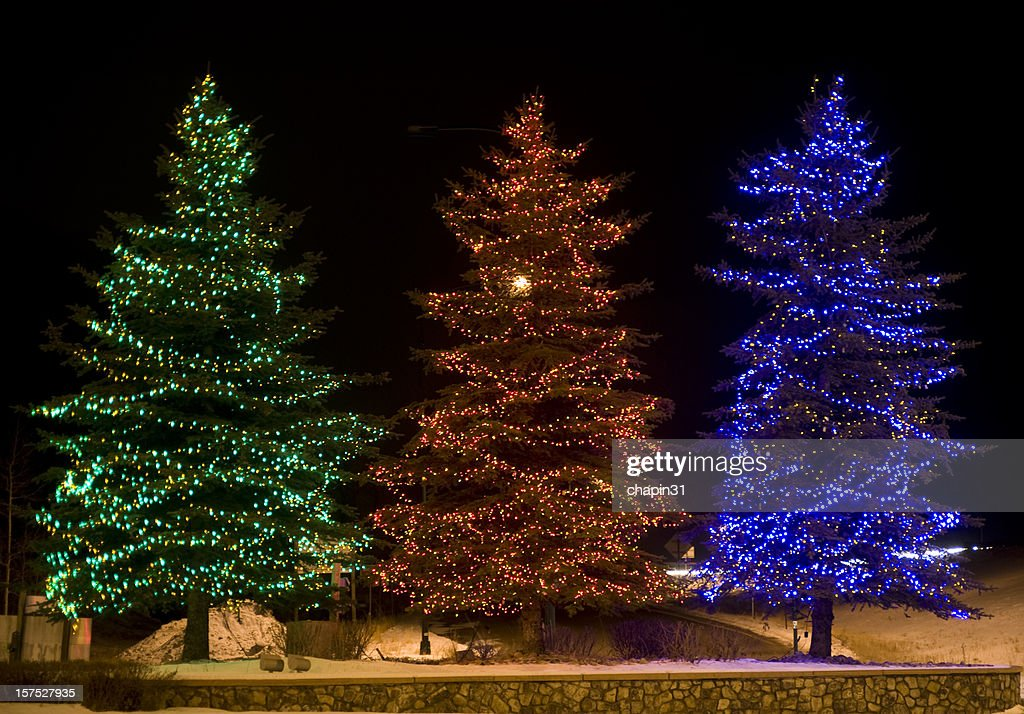 Three Outdoor Lighted Christmas Trees : Stock Photo