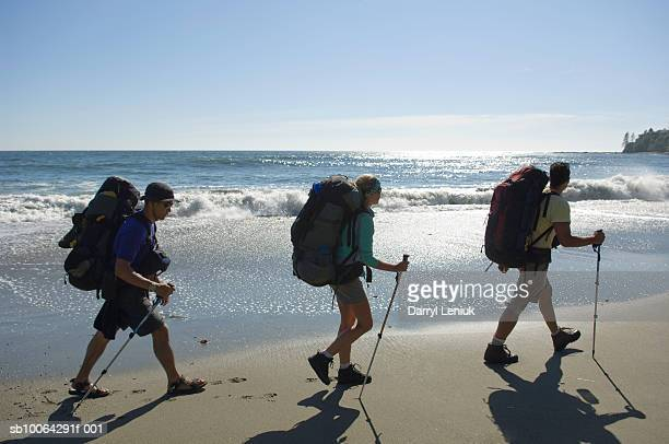 Three people hiking with poles and backpacks on beach, side view