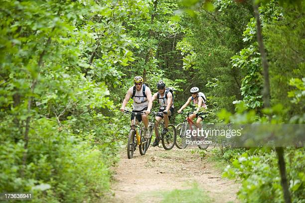 Three people mountain biking in the forest
