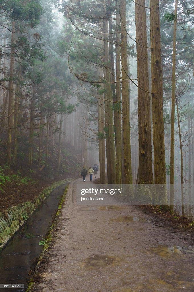 Three people walking in  Jigokudani Monkey Park, Nagano, Japan