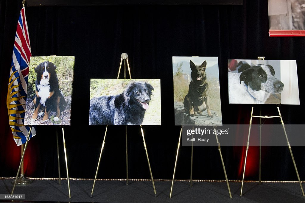 Three pets and one service animal were recognized for their life-saving feats at the annual Purina Animal Hall of Fame ceremony held today at PawsWay, the permanent home of the Purina Animal Hall of Fame. Left to right, Bella, Vicious, Teak and Snickers.