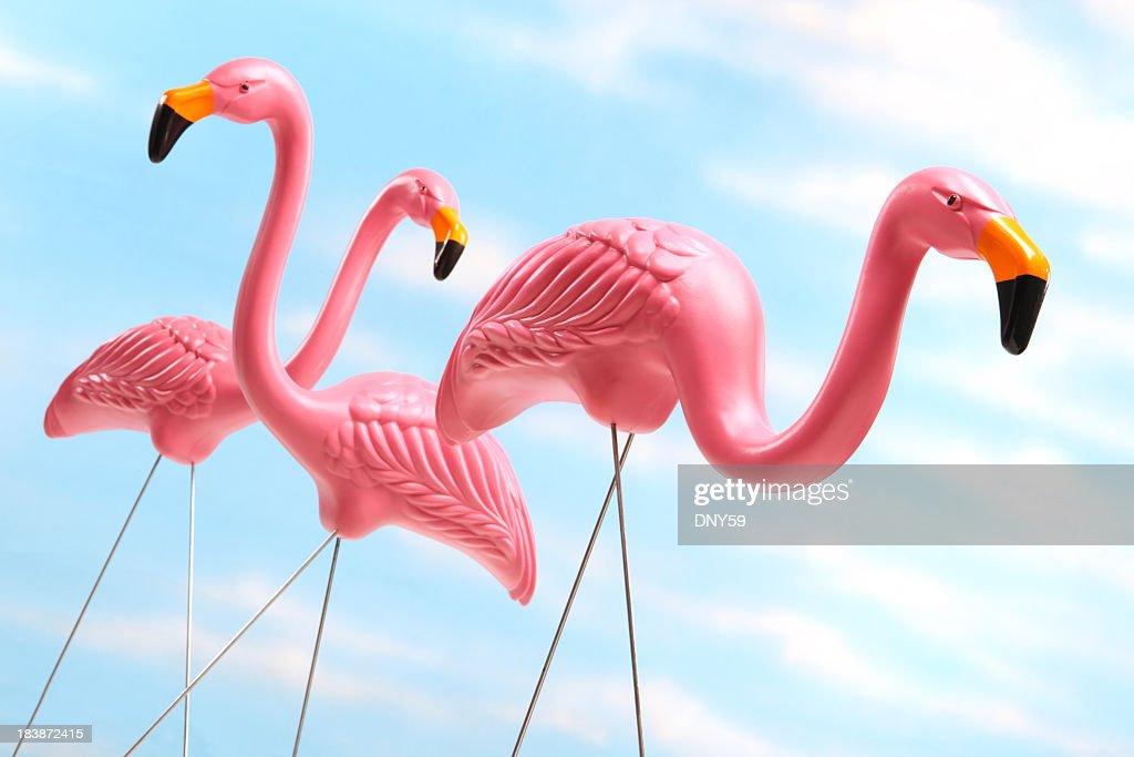 Three pink plastic lawn flamingos against blue sky background