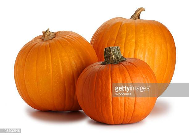 Three Pumpkins Isolated on White