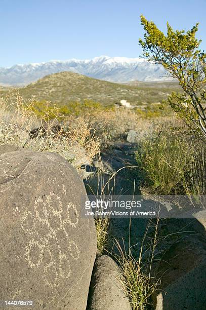Three Rivers Petroglyph National Site a Bureau of Land Management Site features more than 21000 Native American Indian petroglyphs and examples of...