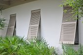 Three windows in a row with shutters