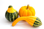 Image of three small autumn gourds against white background.  There are two green and orange gourds as well as a small pumpkin.  The arrangement of vegetables could be a simple decoration or centerpie