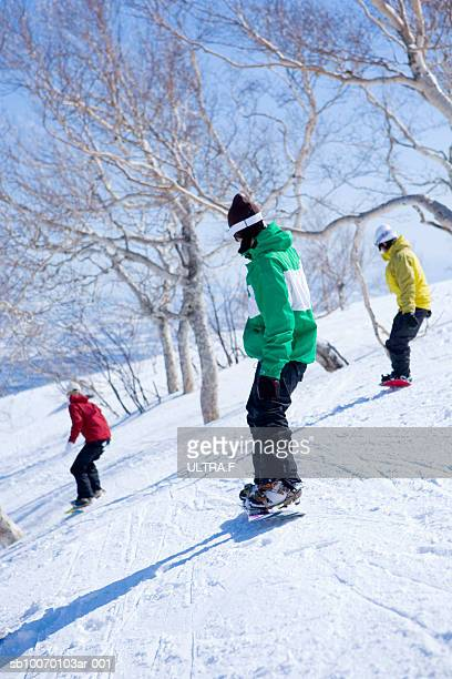 Three snowboarders on slope, rear view