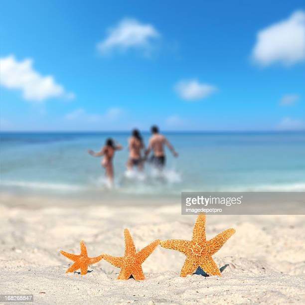 three starfish family vacation on beach